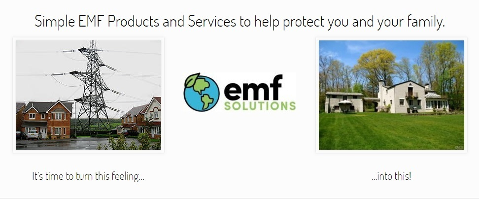 EMF Solutions Home Page